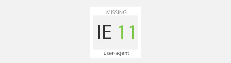ie11 missing user-agent
